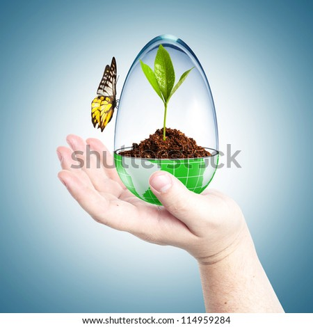 Soil inside globe with glass cover and butterfly. Concept for environmental care - stock photo