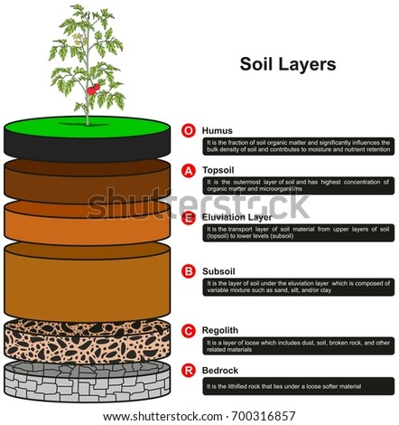 Topsoil stock images royalty free images vectors for Soil and geology