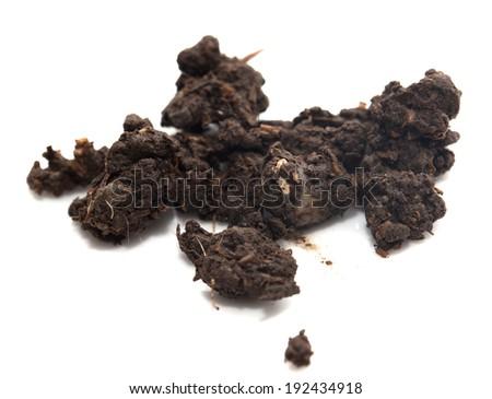 soil on a white background - stock photo
