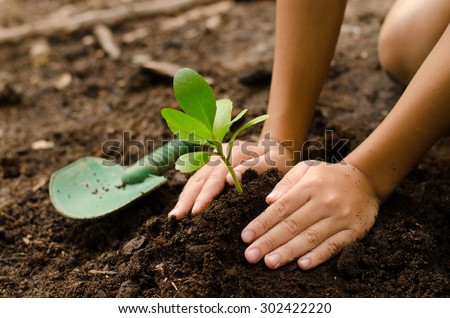 Soil,Planting,Seeding,Seedling,Close up Kid hand planting young tree - stock photo
