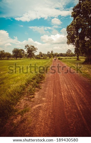 Soil road and grass meadow in  countryside view nature