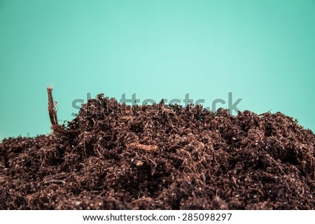soil substrate on a green background