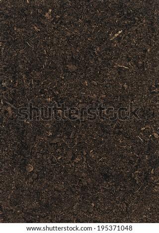 Soil texture background - stock photo