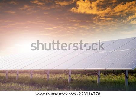 solar battery field against sunset - stock photo