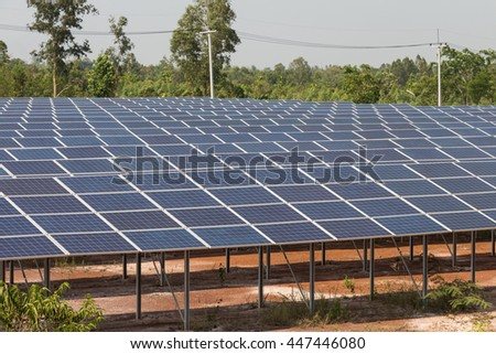 Solar cells in solar farm. Clean energy for generate electric to electrical distribution system.