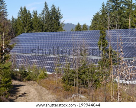 solar energy in the wood - stock photo