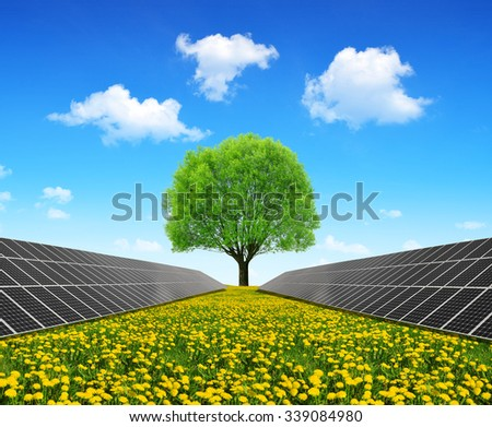 Solar energy panels and tree on dandelion field. Clean energy. - stock photo