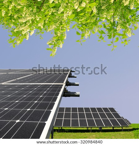 Solar energy panels with blooming branch tree. Clean energy. - stock photo