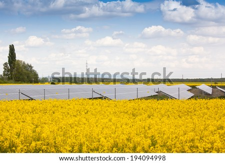 solar energy panels with canola field - stock photo