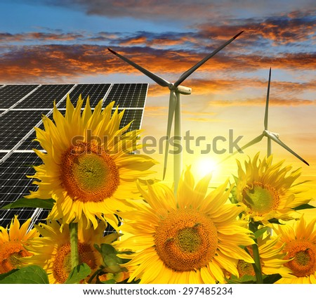 Solar energy panels with wind turbines in sunflower field at sunset. Green energy. - stock photo