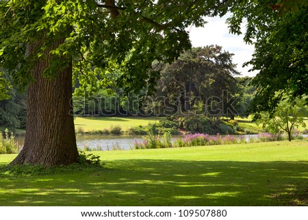 Solar landscape. Summer day on the lake. - stock photo
