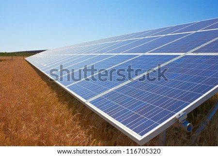 Solar Panel in a field of wheat