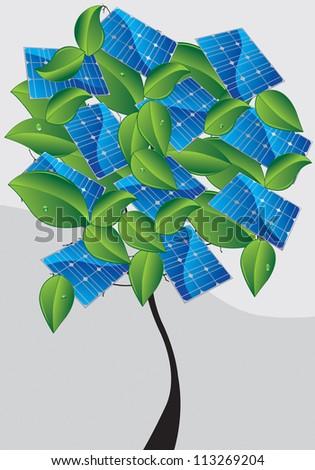 solar panel on the three - stock photo