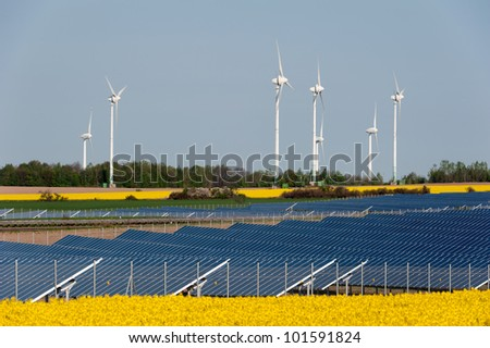 Solar panels and rapeseed field - stock photo