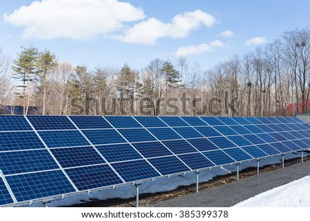 Solar Panels in forest