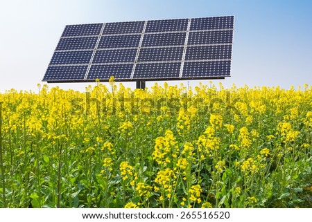 solar panels in rape flower fields, new energy over spring  - stock photo
