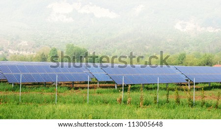 solar panels in the green - stock photo
