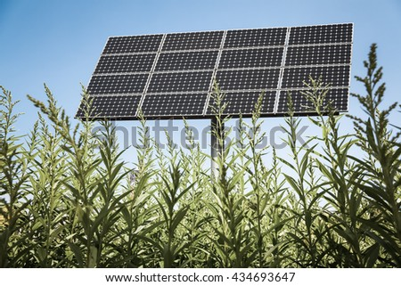 solar panels in the green , clean energy background