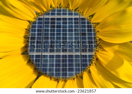 Solar Panels Inside of a Sunflower Concept