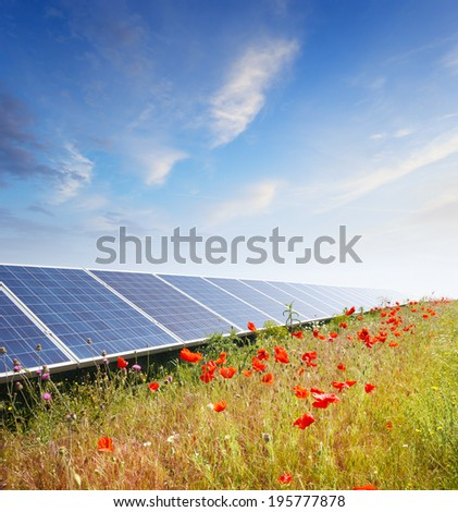 Solar panels with field of flowers - stock photo