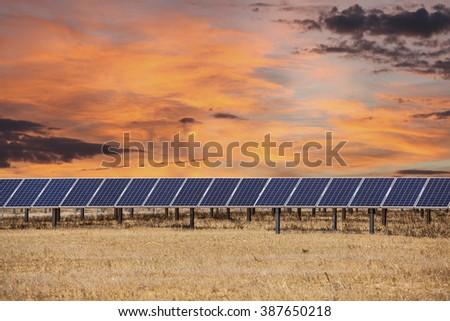 Solar panels with orange sunrise clouds. - stock photo