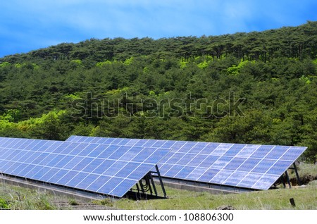 Solar power in front of primeval red pine forest