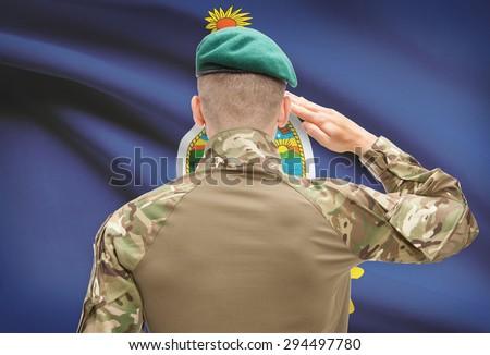 Soldier saluting to US state flag series - Kansas - stock photo