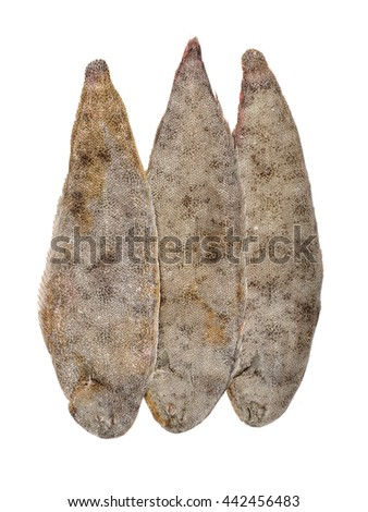 Sole fish on white background