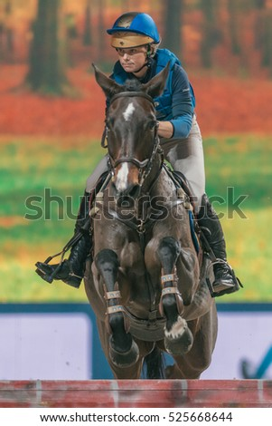 SOLNA, SWEDEN - NOV 24, 2016: Indoor Cross Country event in the Sweden International Horse Show at Friends arena.