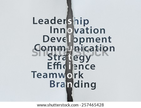 Solution Concept with leadership, innovation, development, communication, strategy, efficience, teamwork, branding - stock photo