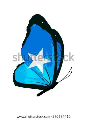 Somalia flag butterfly - stock photo