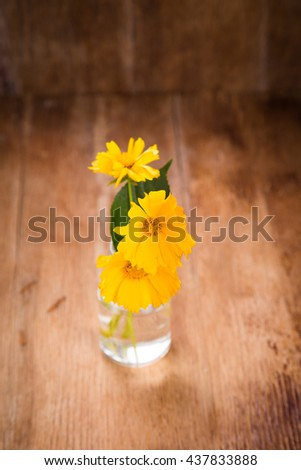 some beautiful yellow flowers in glass vase on wooden background - stock photo