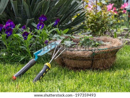 Some garden tools on a reen lawn