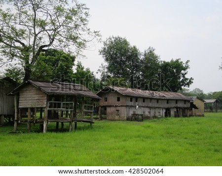 Some old wooden buildings in a green field during the rainy season.