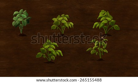 Some potato plants growing in the field. Digital background raster illustration. - stock photo