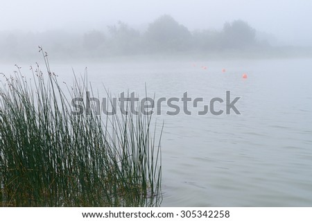 Some red buoys in water of misty lake - stock photo