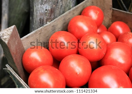 some red tomatoes in wooden box - stock photo