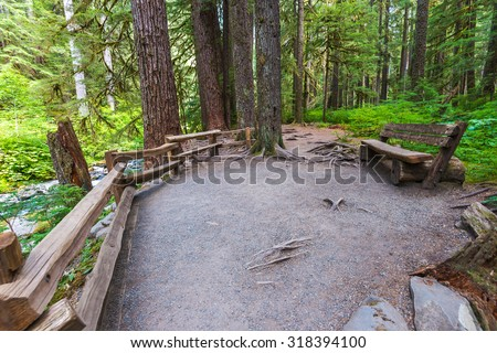 some scene when walk in pathway to Sol Duc waterfall in Olympic national park,Washington State.Usa