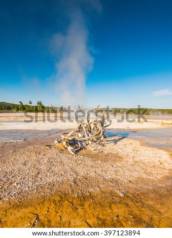 some scenic view of geyser in Yellowstone National park,Wyoming.usa.  - stock photo