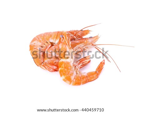 some shrimps isolate on  white background