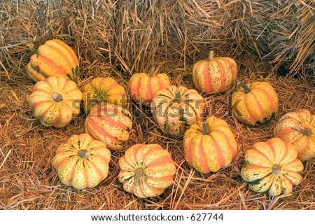 Some striped pumpkins for sale, displayed on bales of straw