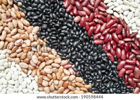 some varieties of  beans: red, white, black, borlotto - stock photo