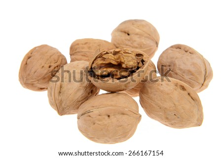 Some walnuts on a white background   - stock photo