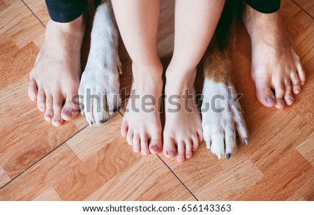 son father family dogs feet feet stock photo edit now 656143363