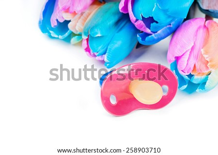 Soother with multicolored tulips - stock photo