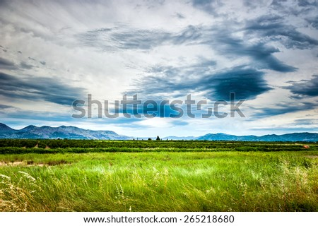 Soothing view of the green meadow and cloudy sky - stock photo