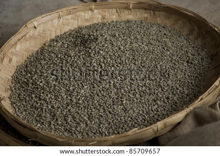 Sorted unripened green coffee beans on a tray - stock photo