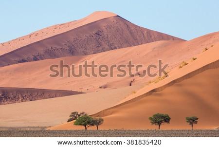 Sossusvlei Dunes Landscape in Namibia - stock photo