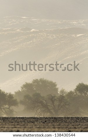 Sossusvlei, Namib Desert, Namibia. Huge dunes and dead trees. Fantastic landscapes of Africa. - stock photo