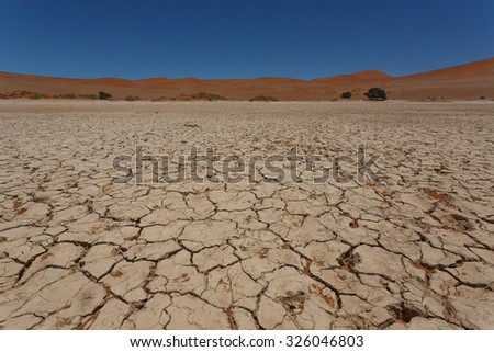 Sossusvlei salt pan with red dunes in background, Namibia